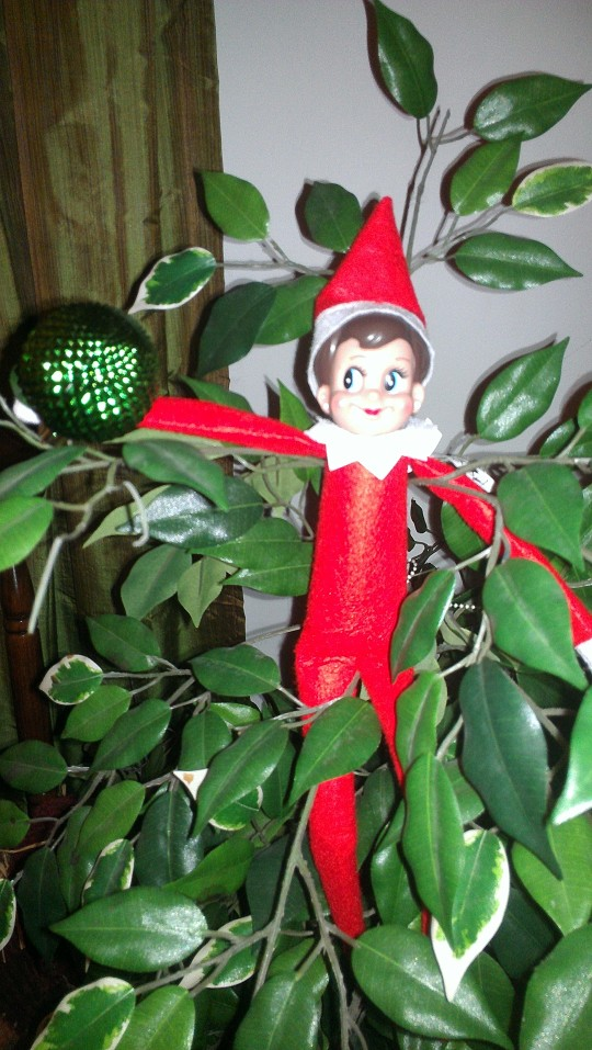 Elf on the Shelf unpacked one of our Christmas ornaments